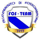 logo_fosteam