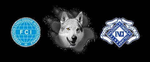Logo Ezechielelupo FCI ENCI