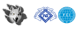 Logo allevamento Ezechielelupo - cane lupo cecoslovacco