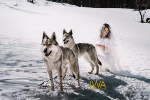 IWA Lupo web filigrana-59
